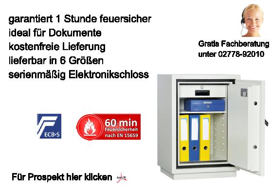 Dokumententresor Torino - LFS 60 P